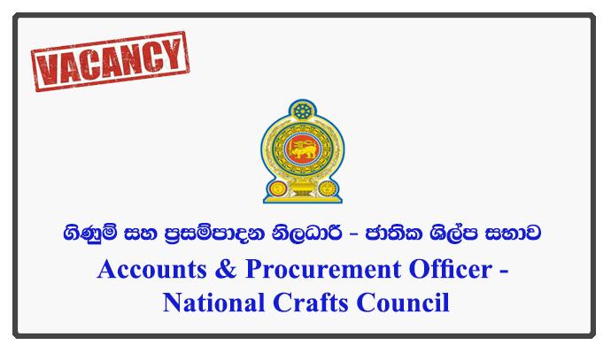 Accounts & Procurement Officer - National Crafts Council