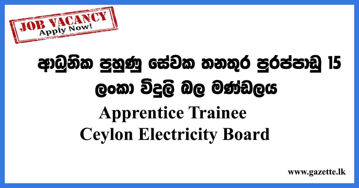 Apprentice-Trainee---Ceylon-Electricity-Board