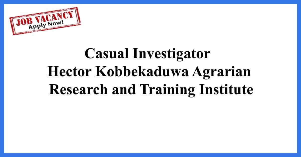 Casual Investigator