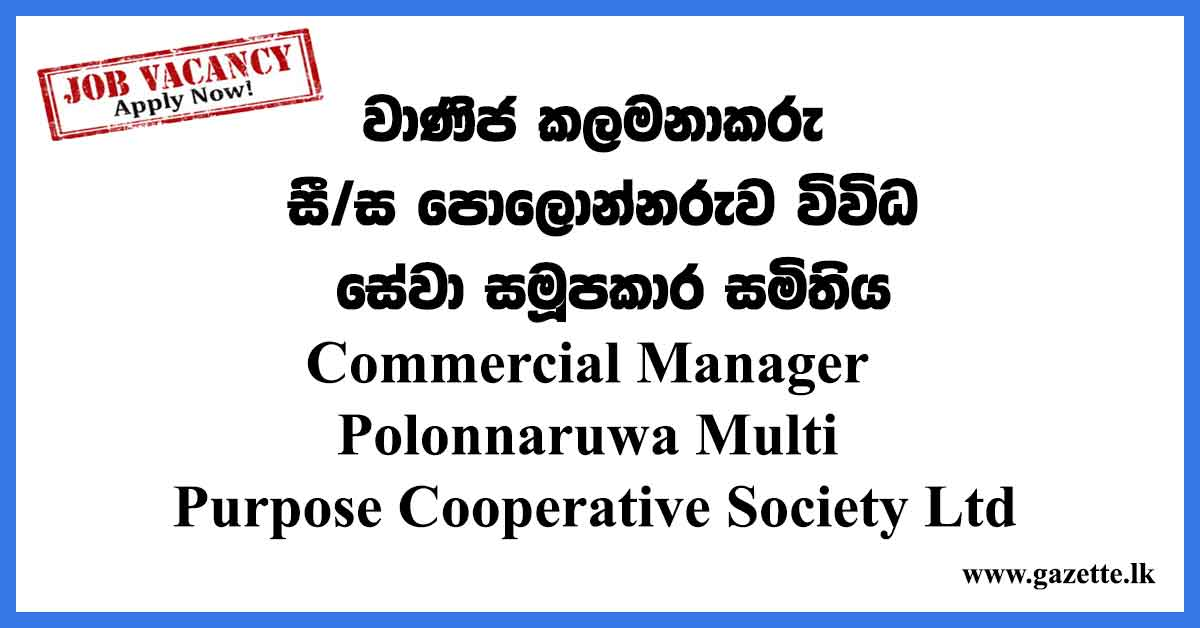 Commercial-Manager-