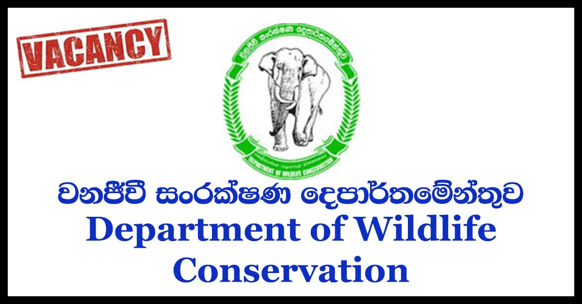 Department of Wildlife Conservation