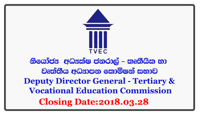 Deputy Director General - Tertiary & Vocational Education Commission