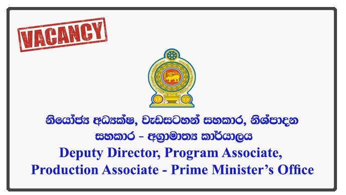 Deputy Director, Program Associate, Production Associate - Prime Minister's Office