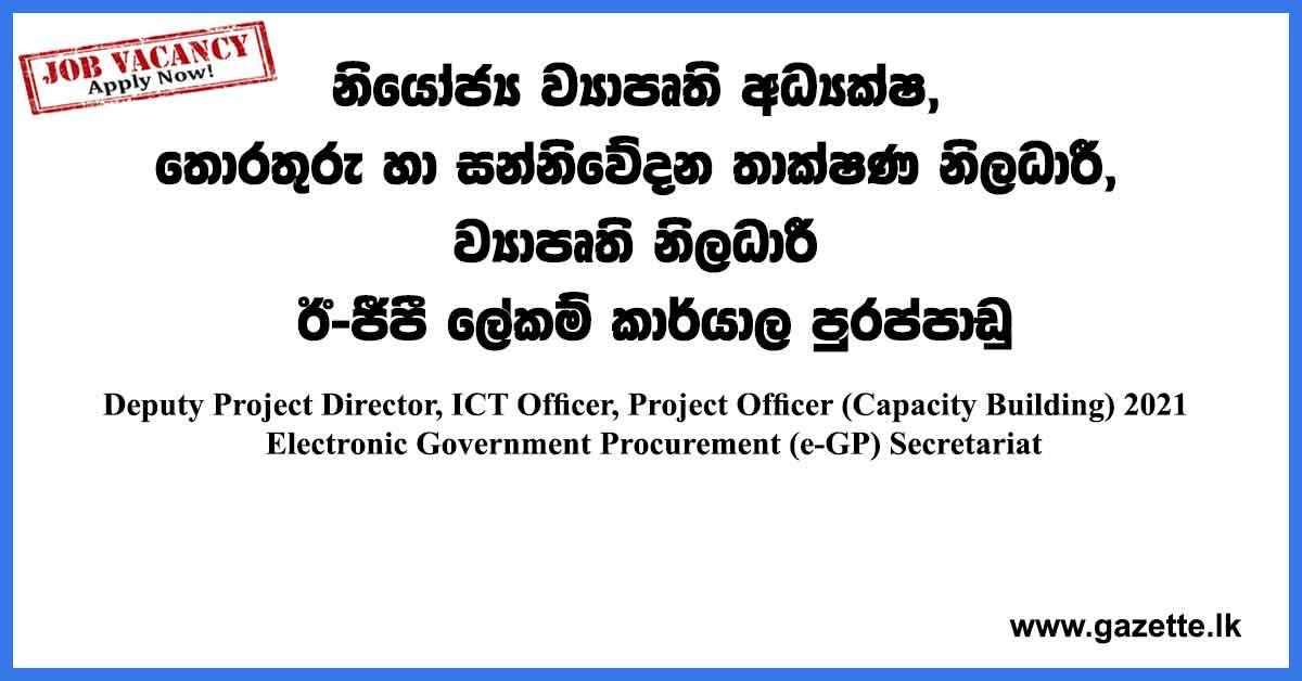 Deputy-Project-Director