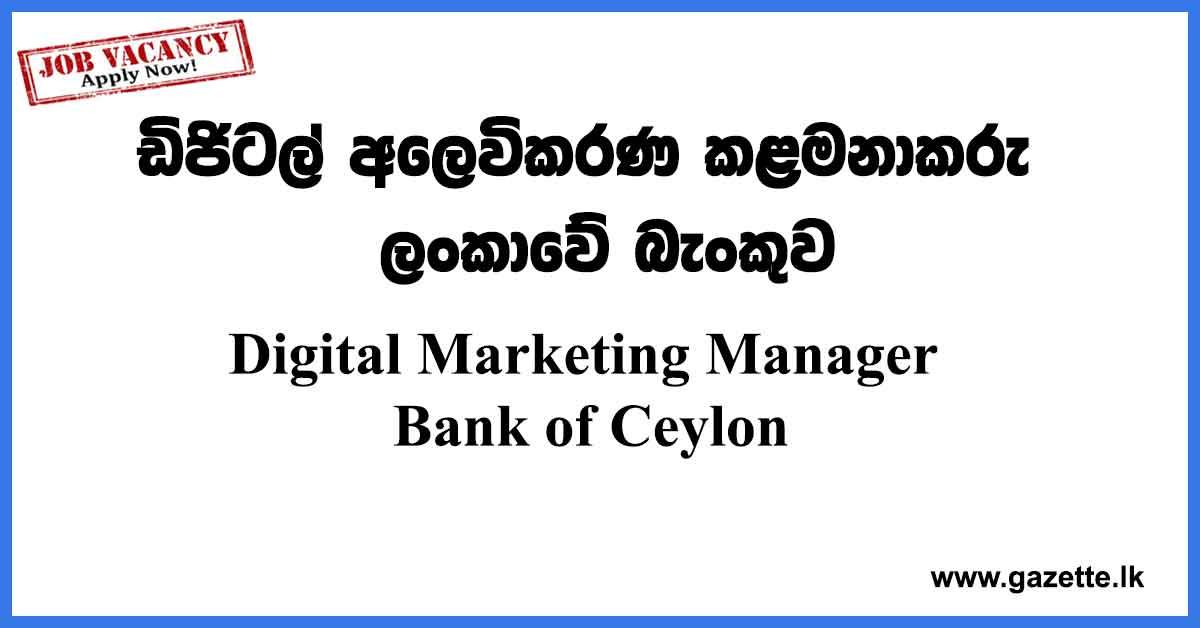Digital-Marketing-Manager