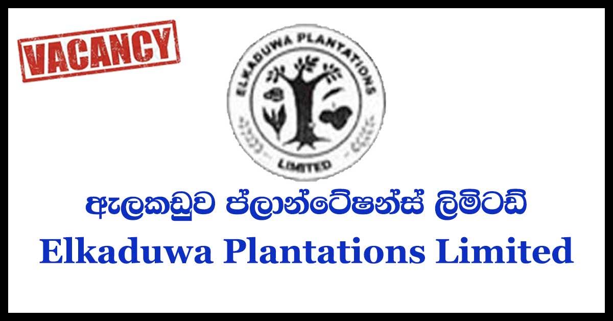 Elkaduwa-Plantations-Limited