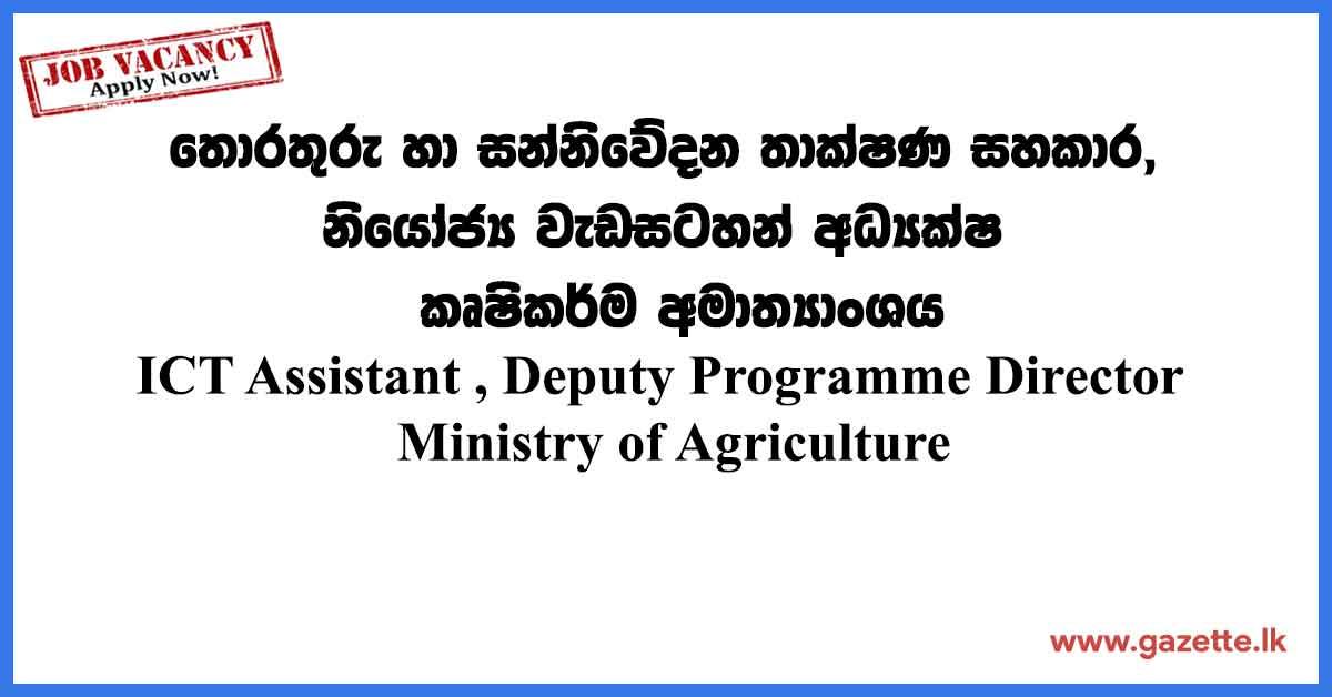 ICT-Assistant-,-Deputy-Programme-Director