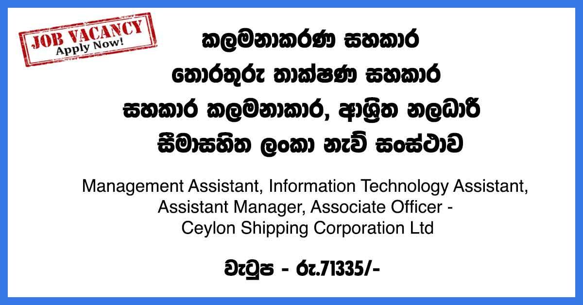 Management-Assistant,-Information-Technology-Assistant,