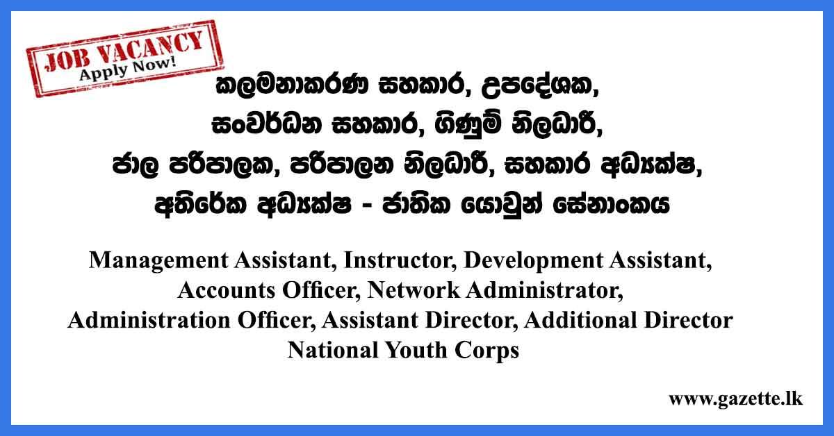 Management-Assistant,-Instructor,-Development-Assistant