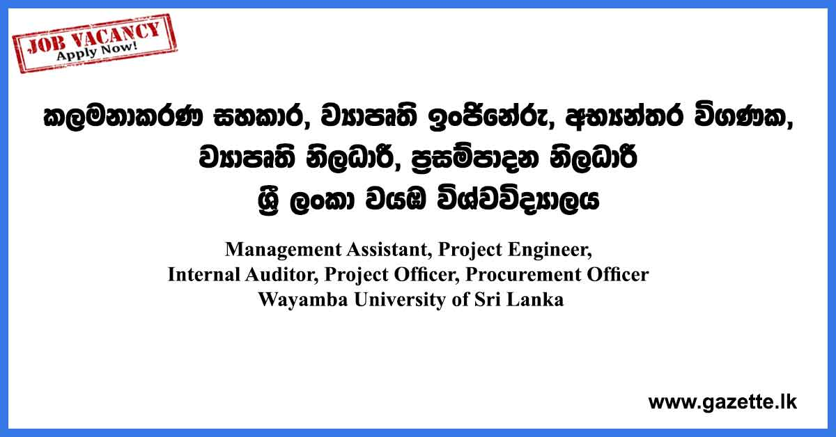 Management-Assistant,-Project-Engineer