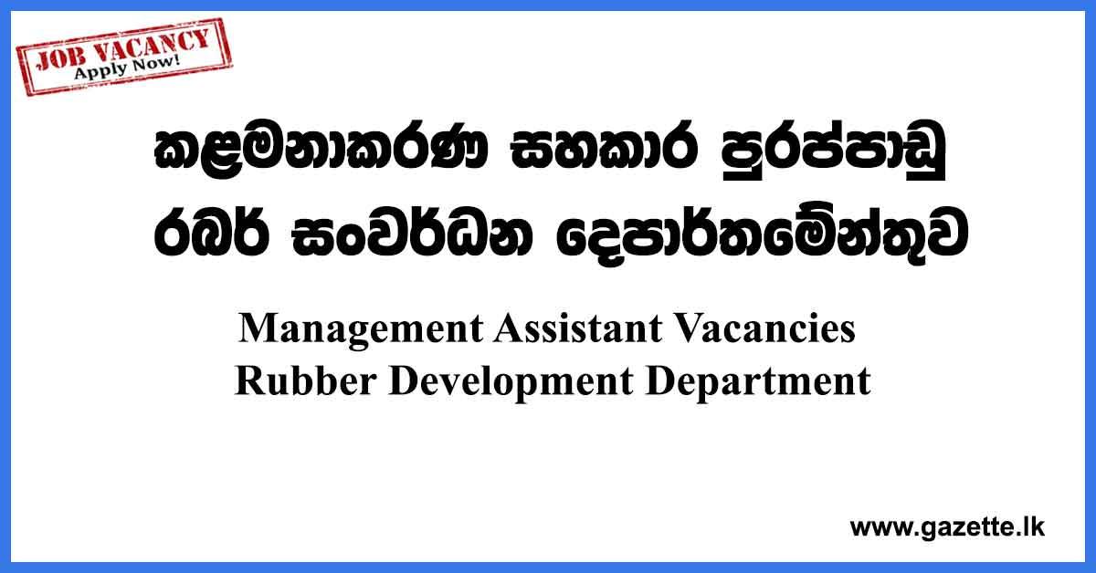 Management-Assistant-Vacancies