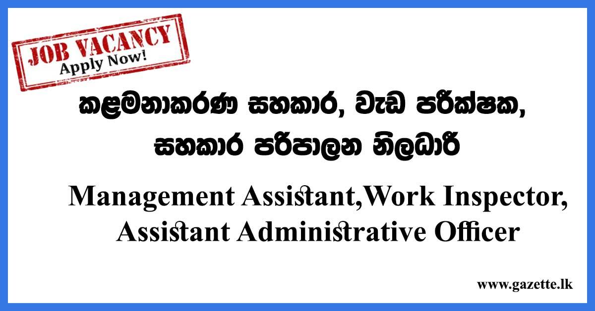 Management-Assistant,Work-Inspector,Assistant-Administrative-Officer