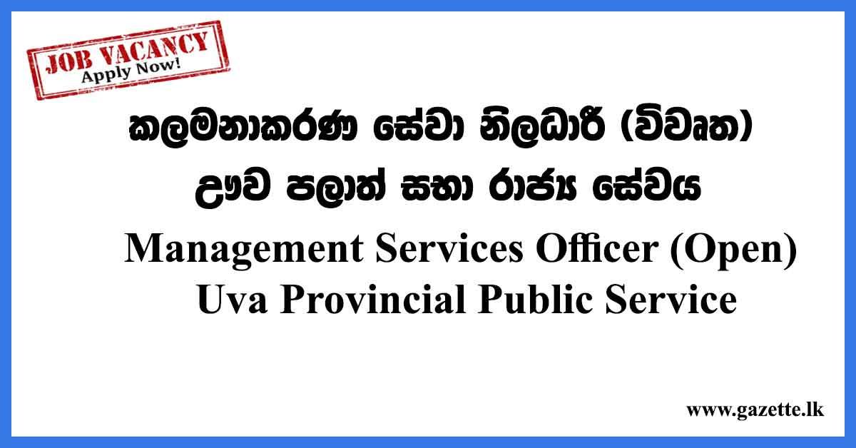 Management-Services-Officer-(Open)