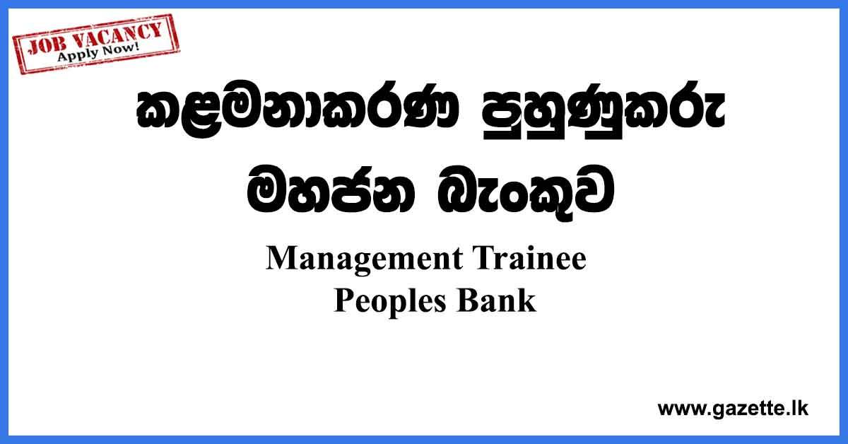 Management-Trainee