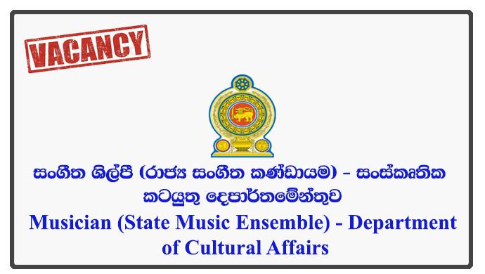 Musician (State Music Ensemble)