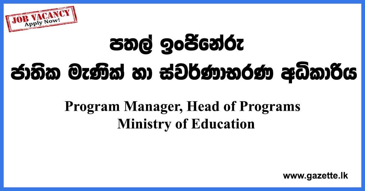 Program-Manager