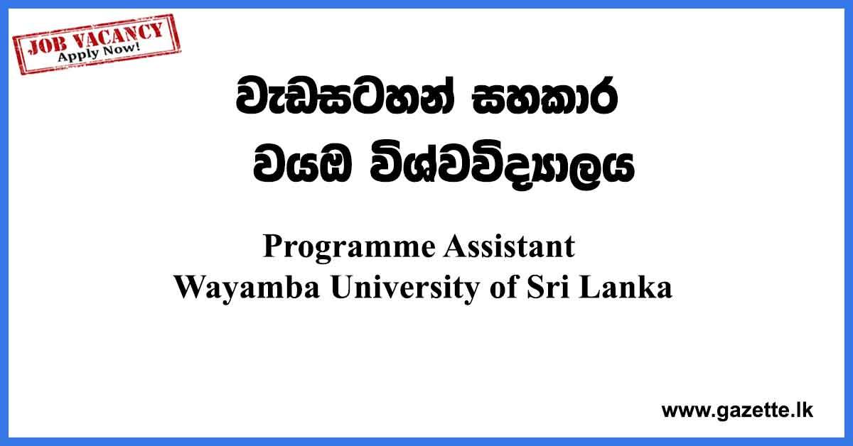 Programme-Assistant