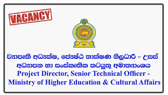 Project Director, Senior Technical Officer - Ministry of Higher Education & Cultural Affairs