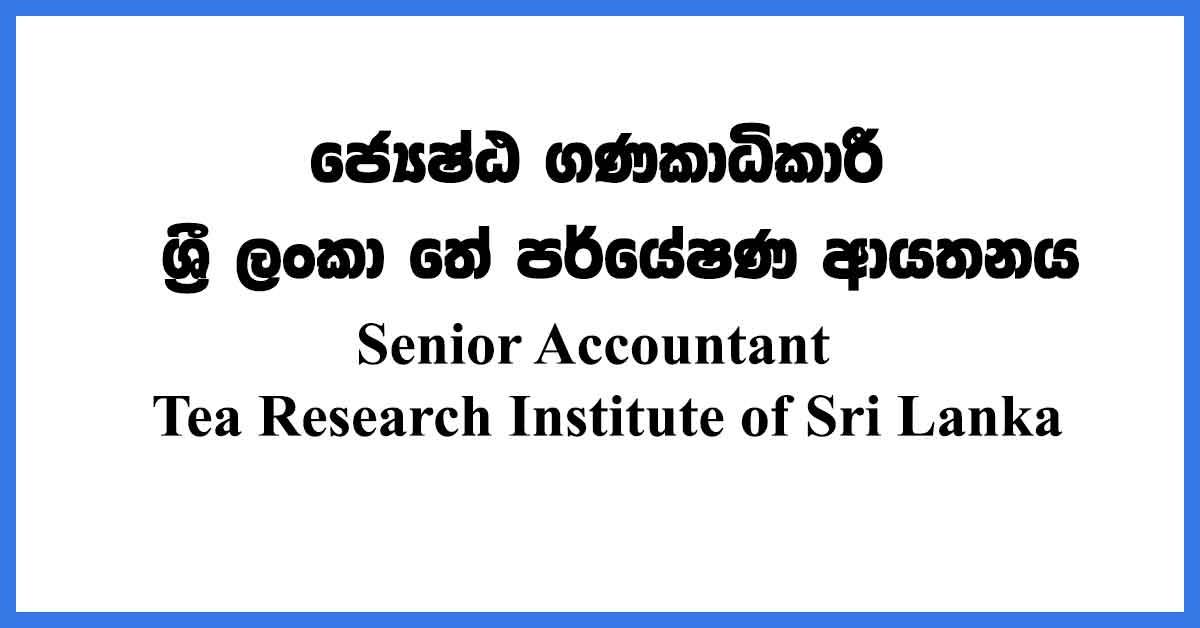 Senior-Accountant