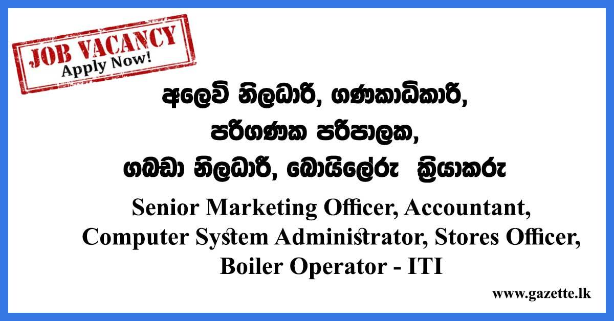Senior-Marketing-Officer,-Accountant--ITI