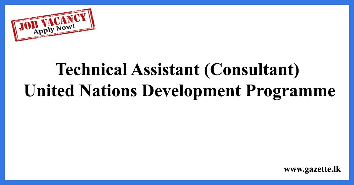 Technical-Assistant-(Consultant)