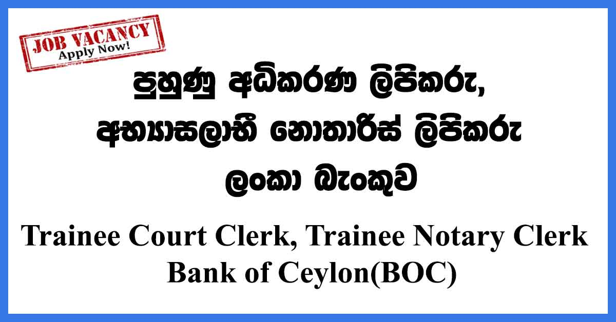Trainee Court Clerk