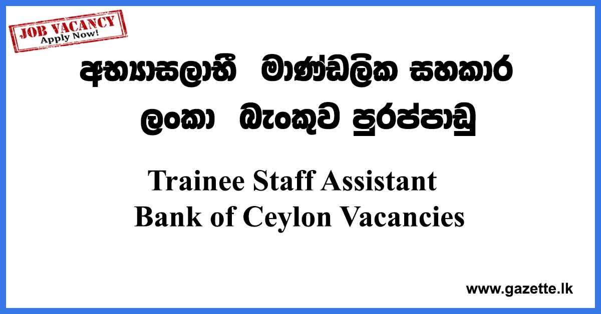 Trainee-Staff-Assistant-BOC